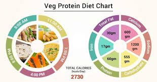 Food And Protein Chart Diet Chart For Veg Protein Patient Veg Protein Diet Chart
