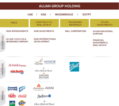 Group Structure Aujan Group Holding