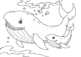 Small Picture Whale Coloring Pages lezardufeucom