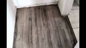 wood floor stain. Hard Wood Floors Staining And Refinishing Floor Stain