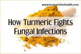 How Turmeric Fights Fungal Infections [UPDATED]