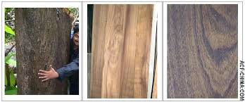 Types of woods for furniture Wood Flooring Woods Used For Furniture Type Woods Used For Furniture Types Of Wood Used In Furniture Reclaimed