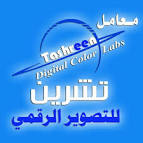 دليل الاعمال اليمنية - واي بزنس