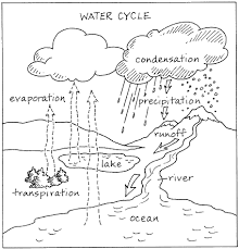 Small Picture water cycle coloring page 17 best images about water cycle su dngs