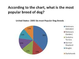 Chart Dog Graph Ppt According To The Chart What Is The Most Popular Breed