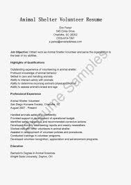 sample of resume volunteer experience resume builder sample of resume volunteer experience volunteer resume sample resumes misc livecareer resume samples animal shelter