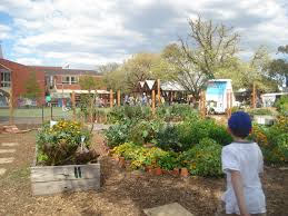 Kitchen Garden Blog I School Kitchen Gardens Sustainable Self Sufficiency Gardening