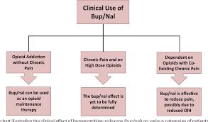 Buprenorphine Conversion Chart Figure 3 From Buprenorphine Naloxone Therapy In Pain