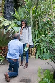 daniel stowe botanical gardens violin by christine com