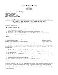 Sample Federal Resume Summary Of Qualifications Experience Resume