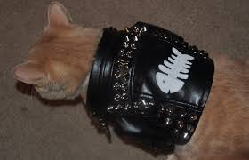 kitty cat leather jacket