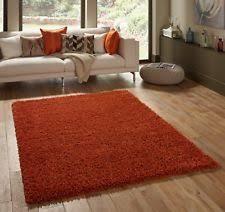burnt orange rug. SMALL - EXTRA LARGE BURNT ORANGE TERRACOTTA RUST THICK SHAGGY LUXURY MODERN RUG Burnt Orange Rug T