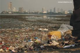 how clean is and environmental issues ruparaii