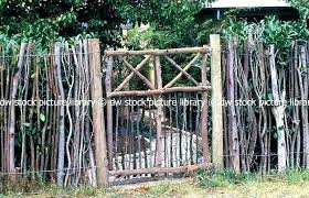 wood garden gate designs wooden diy s