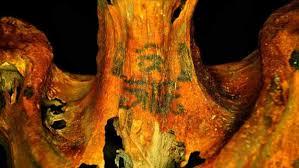 откуда у древнеегипетской мумии необычные татуировки National