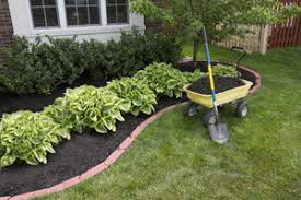 ... low cost landscaping