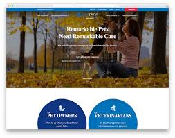 Veterinary Website Design Inspiration 19 Best Veterinary Websites For Veterinarians 2019 Colorlib