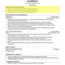 Professional Profile In Resumes How To Write A Professional Profile Resume Genius Inside Resume