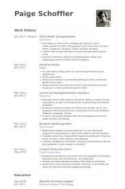Social Media Strategist/Intern Resume samples