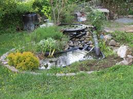 Backyard Ponds Diy Build A Natural Fish Pond In Your Backyard Worldwide