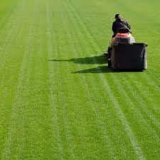 Mowing Patterns Delectable Cut Like a Pro The Best Lawn Mowing Patterns