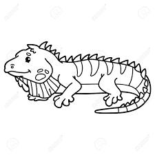 Vettoriale Iguana Carino Illustrazione Della Cute Personaggio Dei