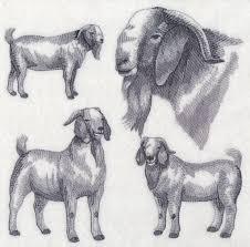 Boer Goat Embroidery Designs Boer Goat Embroidered Sweatshirt Shirt Boer Goats Machine