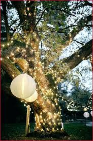 outdoor paper lanterns outdoor tree lantern lights a awesome best paper lanterns images on