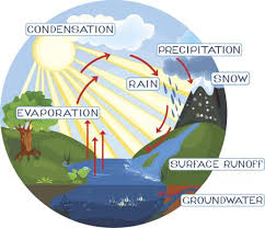 a simple guide to the steps of the water cyclewater cycle processes