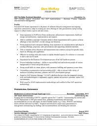 Sample Security Consultant Resume Sarahepps Com
