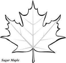 Small Picture maple leaf to color Clipart Panda Free Clipart Images