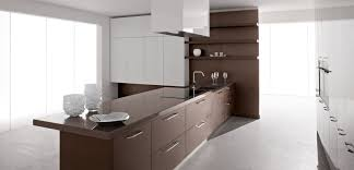 Modern Kitchen Wood Cabinets White And Brown Kitchen Cabinets Outofhome