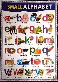 Amazon In Buy Small Alphabet Kids Chart Paper Inch75x47