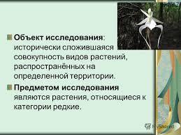 Презентация на тему Всероссийский конкурс рефератов Кругозор  3 Объект