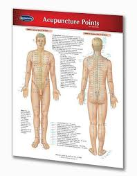 Whole Body Chart Acupuncture Points Chart Quick Reference Guide
