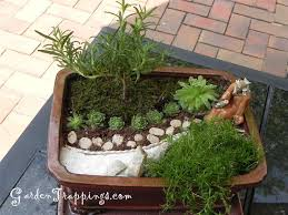 Small Picture Best 25 Miniature zen garden ideas on Pinterest Fairy garden