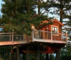 cool tree house blueprints. Best Tree House Designs Cool Blueprints T