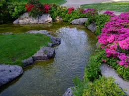 Japanese Garden Landscaping Free Images Plant Lawn Flower Pond Stream Spring Backyard