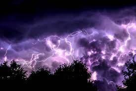Lightning and Trees 4K wallpaper ...