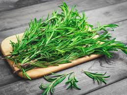 Rosemary: Benefits, Uses, and Side Effects | Organic Facts