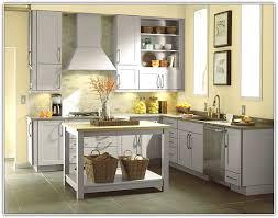 medallion kitchen cabinets design inspiration architecture rh elizadiaries