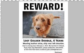 Lost Pet Flyer Maker Missing Dog Flyer Template AvraamInfo 4