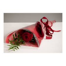 single red rose flower.  Rose Single Red Rose Single Flower To Red Rose Flower E
