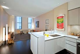 Luxury 1 Bedroom Apartments Nyc Marvelous On In Rental Apartment Open  Kitchen Interior Design 25 Broad
