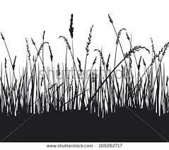 tall grass silhouette. Exellent Tall To Tall Grass Silhouette