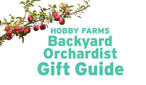 Five Fruits For The Childrenu0027s Garden  Review Backyard Berry BookThe Backyard Orchardist