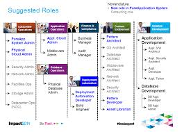 Organization Structure Roles Responsibilities For Ibm