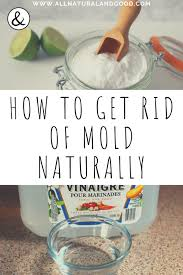 mold naturally without bleach