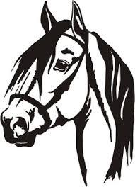 quarter horse head clip art. Simple Horse Bridling Clipart Quarter Horse 49594254 On Quarter Horse Head Clip Art E
