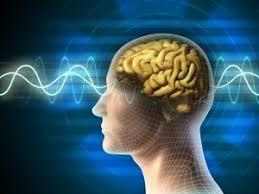 Eeg Ambulatory Eeg Denville Nj Dr Miric Neurology Center